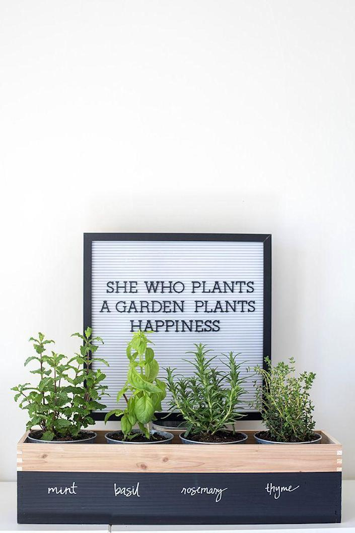 """<p>This wooden planter is a dream for any cook. It'll keep her well-stocked with all of her favorite herbs.</p><p><strong>Get the tutorial at <a href=""""https://www.aliceandlois.com/diy-herb-garden-planter/"""" rel=""""nofollow noopener"""" target=""""_blank"""" data-ylk=""""slk:Alice & Lois"""" class=""""link rapid-noclick-resp"""">Alice & Lois</a>. </strong></p><p><strong><a class=""""link rapid-noclick-resp"""" href=""""https://go.redirectingat.com?id=74968X1596630&url=https%3A%2F%2Fwww.walmart.com%2Fip%2FCraft-and-Hobby-Wood-Burning-Art-Tool-Kit-Accessories%2F852829099&sref=https%3A%2F%2Fwww.thepioneerwoman.com%2Fholidays-celebrations%2Fgifts%2Fg32307619%2Fdiy-gifts-for-mom%2F"""" rel=""""nofollow noopener"""" target=""""_blank"""" data-ylk=""""slk:SHOP WOOD CRAFT TOOLS"""">SHOP WOOD CRAFT TOOLS</a><br></strong></p>"""