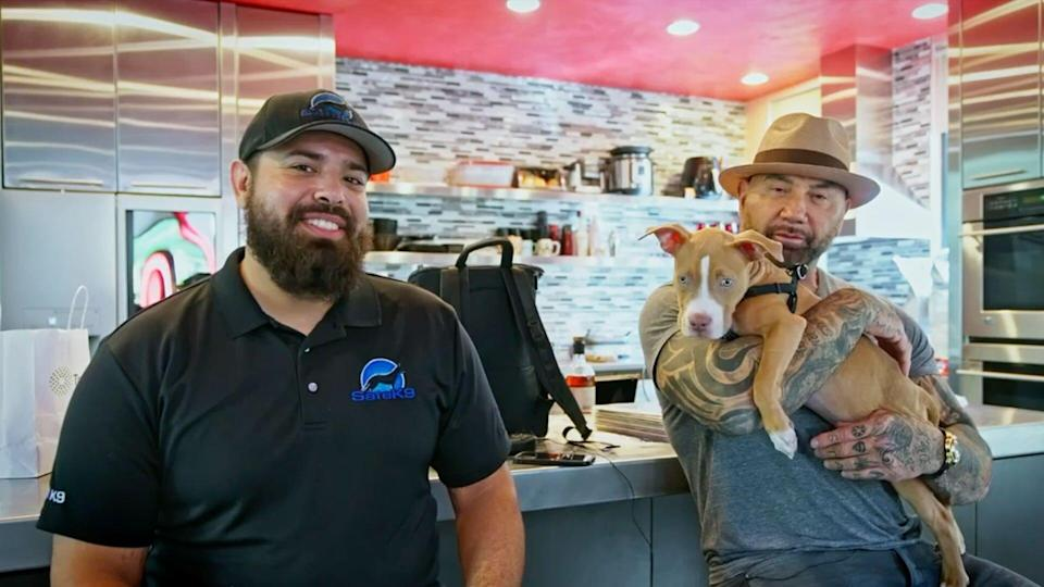 Dave Bautista adopts neglected dog now named 'Penny' from Humane Society of Tampa Bay