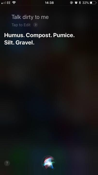 funny questions to ask siri talk dirty 1
