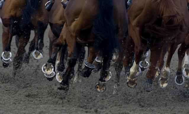 "<span class=""element-image__caption"">Kempton host a meeting of all-weather racing at the track on Monday.</span> <span class=""element-image__credit"">Photograph: Alan Crowhurst/Getty Images</span>"