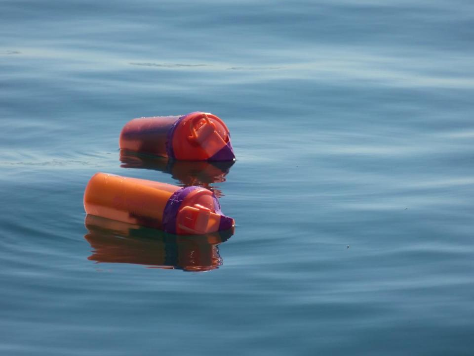 UofT researchers are dumping plastic bottles into Lake Ontario, here's why
