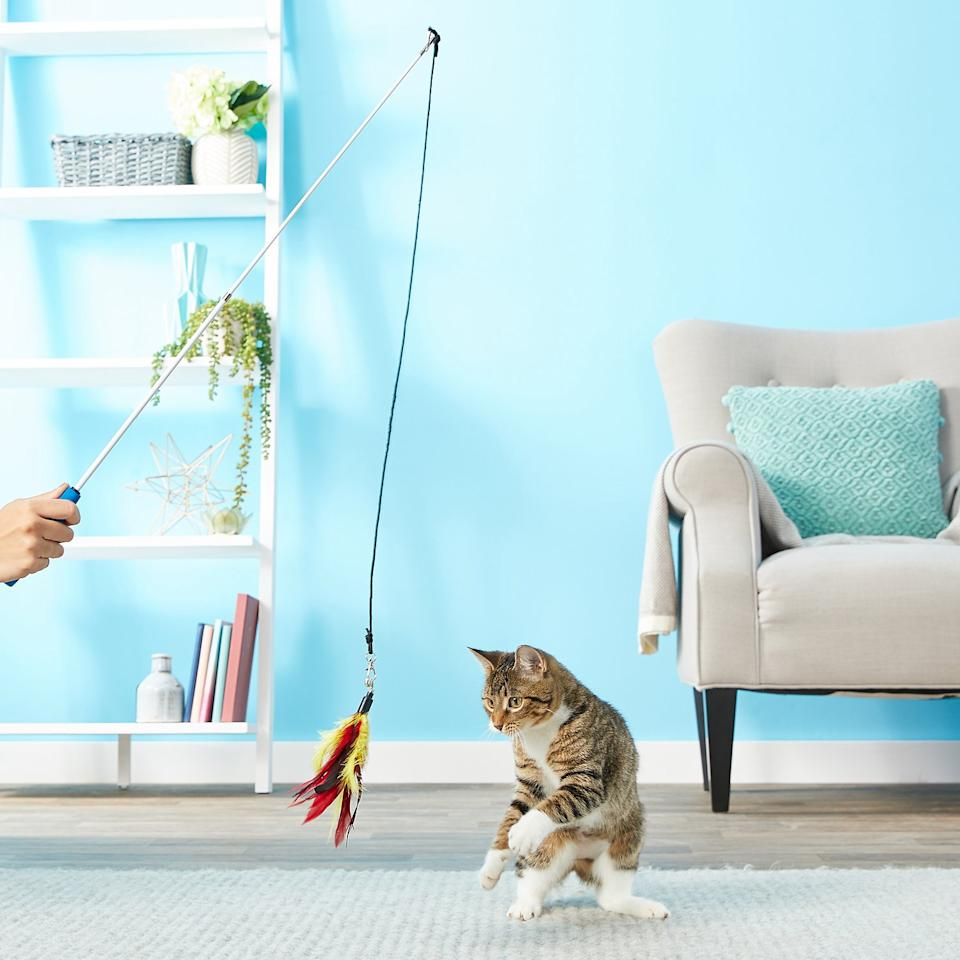 Kitties will love to swat at the feather wand. (Photo: Chewy)