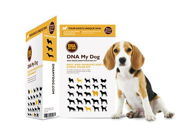 DNA My Dog Breed Identification Test (Photo: Yahoo Lifestyle Shop)