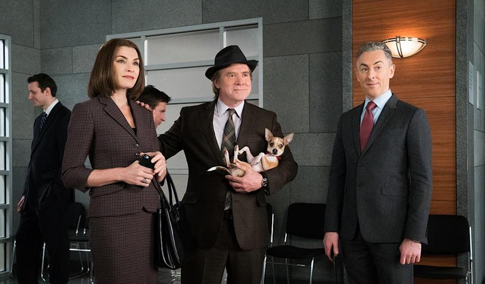"""<p>Just when you thought you'd seen every quirk on 'The Good Wife,' we were introduced to Elsbeth's ex-husband, Mike Tascioni (Will Patton), who shares custody of their absurdly chill Chihuahua mix (played by a one-and-a-half-year-old rescue dog named Louie). """"We've been interested in the idea of emotional support dogs, and it made sense to us, as we built the Mike character, that he might benefit from one,""""<i> 'Good Wife' </i>executive producer Craig Turk <a href=""""https://www.yahoo.com/tv/the-good-wife-scoop-tom-the-dog-returns-180920501.html"""" data-ylk=""""slk:told Yahoo TV;outcm:mb_qualified_link;_E:mb_qualified_link;ct:story;"""" class=""""link rapid-noclick-resp yahoo-link"""">told Yahoo TV</a>. """"Then it felt like high-strung Elsbeth might benefit, too. And if you begin to imagine what the dog in that situation would feel like… you get Tom. I named him Tom because, when writing the Mike character for the first time, I described him as hero-worshipping Atticus Finch — so, the 'To Kill a Mockingbird' connection.""""<br><i>(Credit: David M. Russell/CBS)</i></p>"""