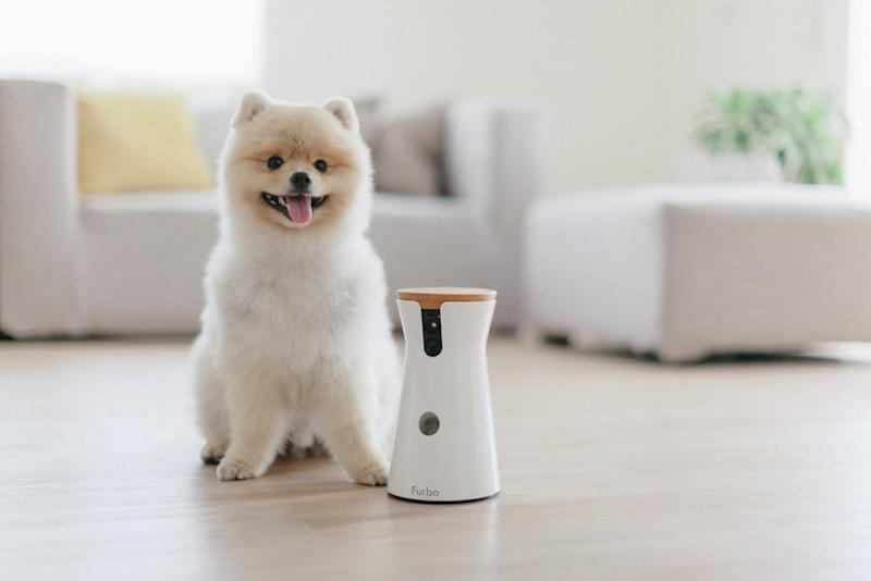 Furbo Pet Camera | Vanillapup