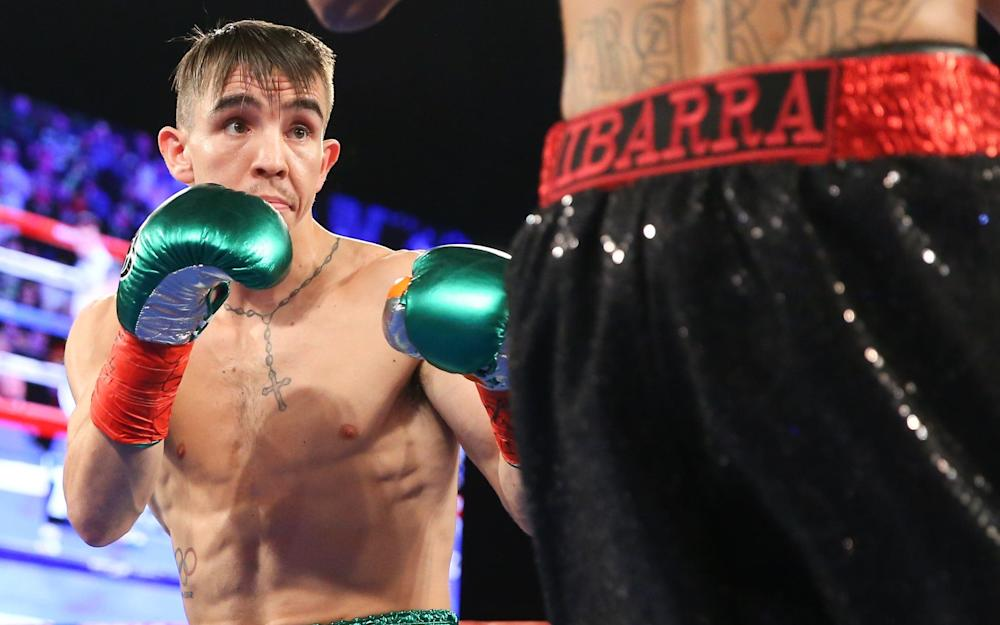 Michael Conlan, during his super bantamweight bout against Tim Ibarra at Madison Square Garden - Credit: Getty