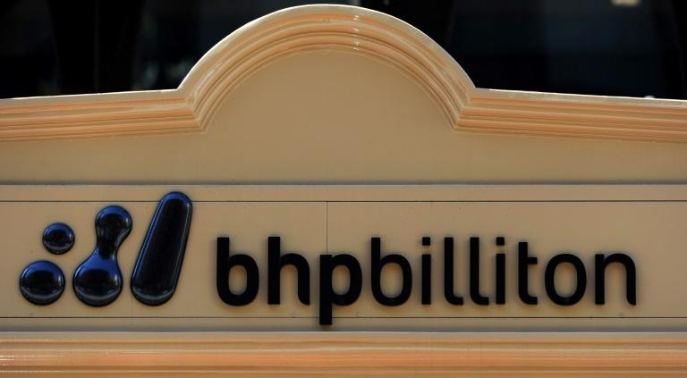 Mining giant BHP Billiton has rejected an activist hedge fund proposal that it restructure the business and spin off its US petroleum arm, saying the costs and risks outweigh any benefits