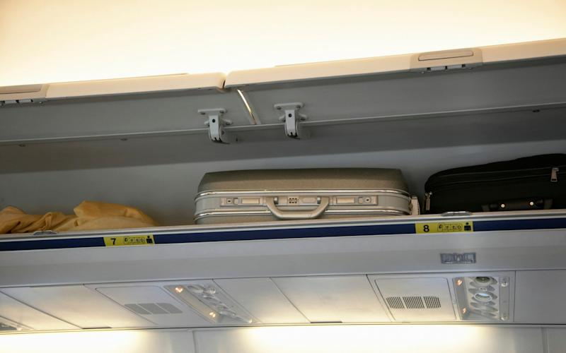 A dog died after being placed in an overhead locker on a United Airlines flight - The Image Bank