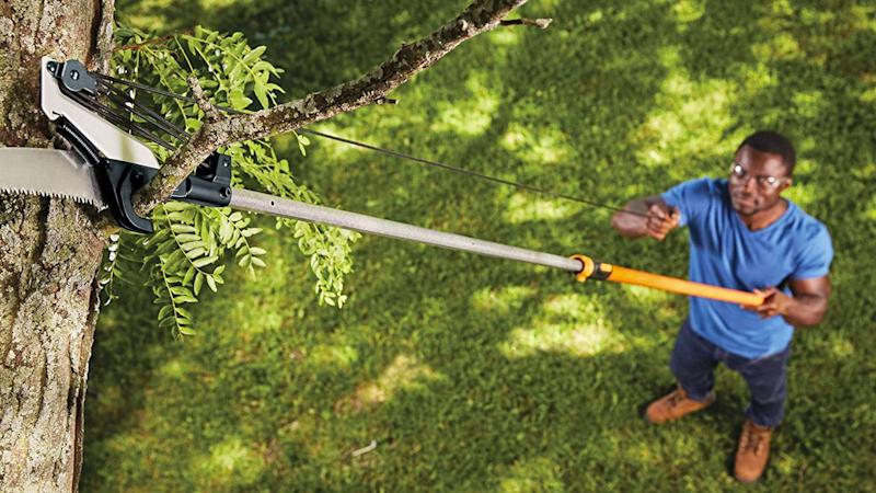 Keeping branches trimmed is a great way to prevent future damage to your roof, windows, or siding.