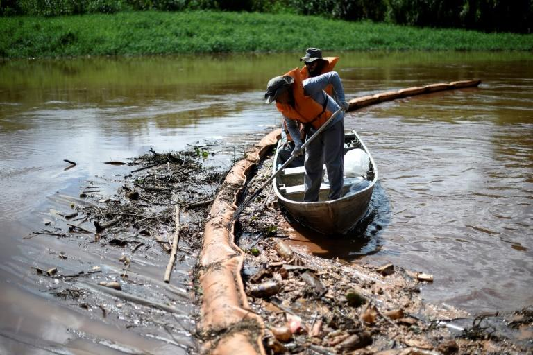 Researchers collect dead fish from a retention membrane installed at the Paraopeba River, Brazil, to try to retain mud, after the collapse of a dam