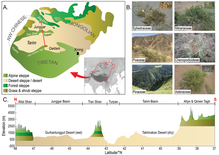 image showing a map, some plants and a cross section of some mountains and a desert