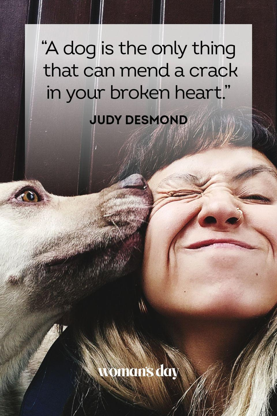 """<p>""""A dog is the only thing that can mend a crack in your broken heart.""""</p>"""