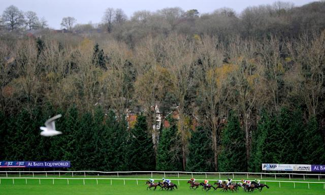 "<span class=""element-image__caption"">Racing at Newbury begins at 2.00.</span> <span class=""element-image__credit"">Photograph: Harry Trump/Getty Images</span>"