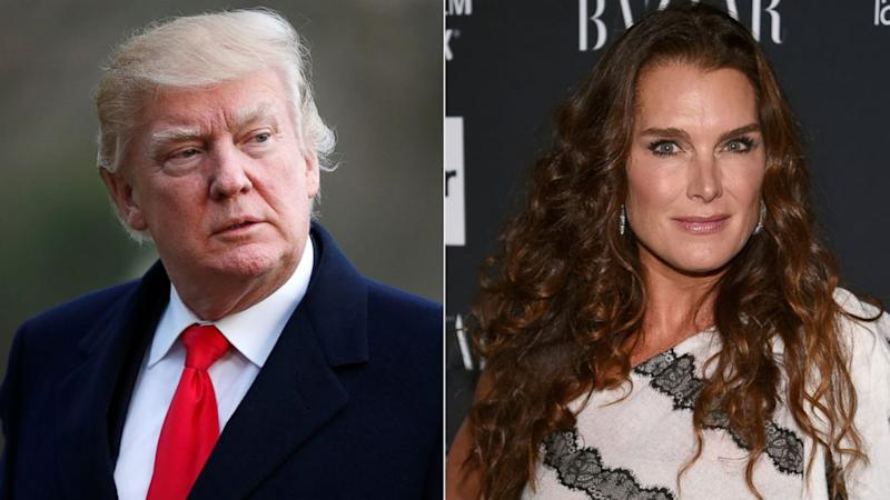 Brooke Shields says she once turned Donald Trump down for a date