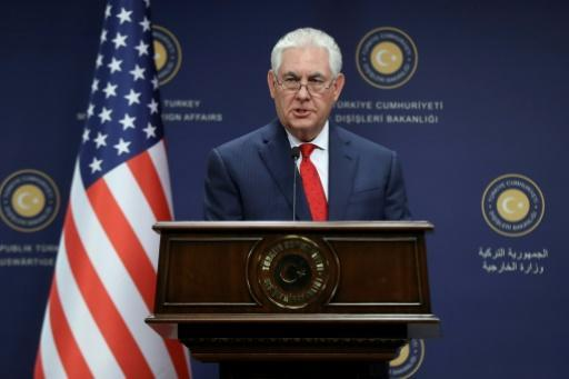 Tillerson says Assad's fate up to Syrian people