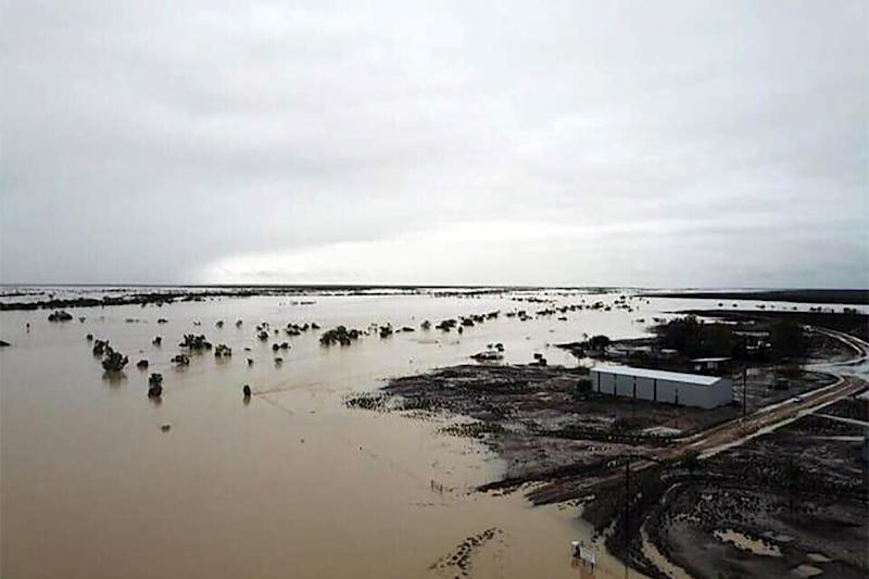 Heavy rains have flooded swathes of Queensland state, with the full scale of the devastation on drought-hit cattle stations becoming clearer as floodwaters recede (AFP Photo/Handout)