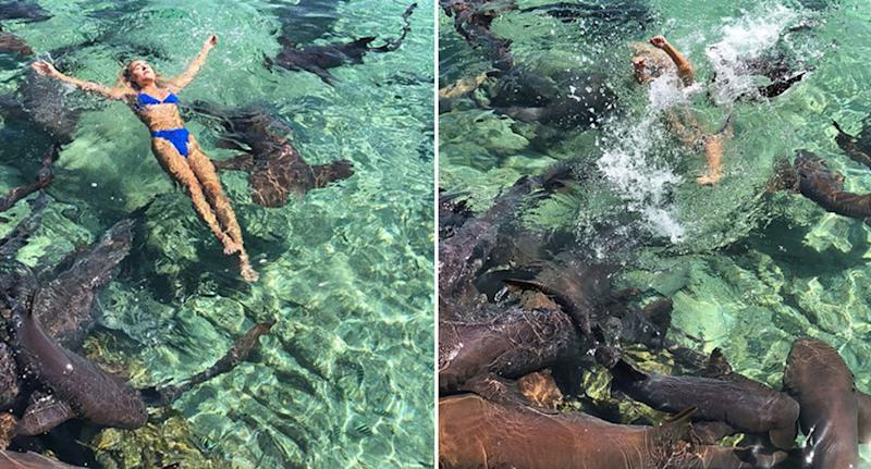 Instagram Model Posing For Photo Amidst School Of Sharks Bitten By Shark