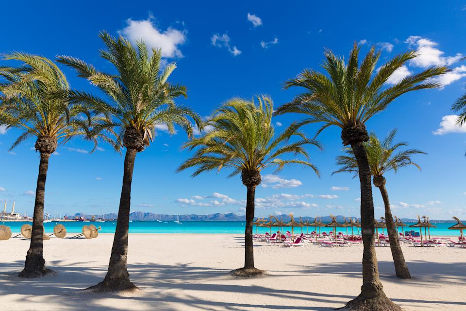 Platja de Alcudia beach in Majorca has been voted the top family-friendly beach in Spain by local families. (Getty Images)