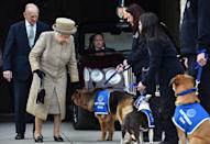 <p>Queen Elizabeth and Prince Philip greet dogs the at the opening of the new Mary Tealby dog kennels at Battersea Dogs and Cats Home in London.</p>
