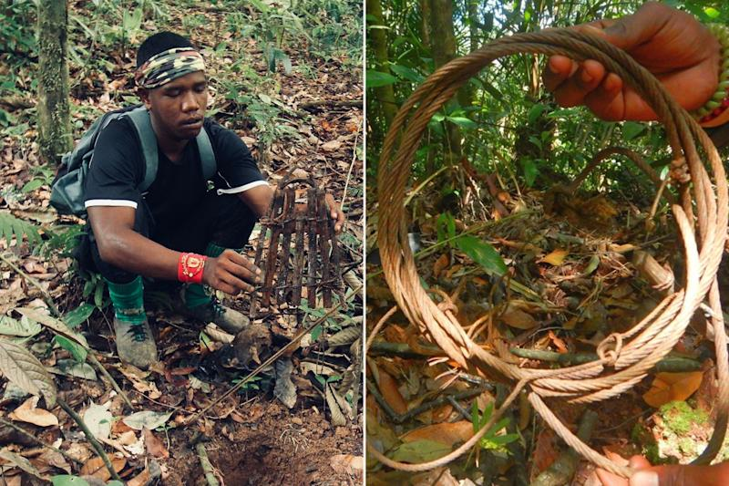 A member of an anti-poaching unit dismantling a snare, while another member shows off an old wire snare. Such traps often mean a slow, painful death for the animals indiscriminately caught in them. (PHOTOS: WWF Malaysia)