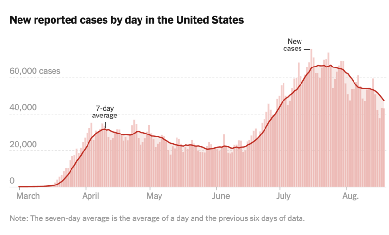 At a national level, the US never really depressed the number of new daily cases. Source: New York Times