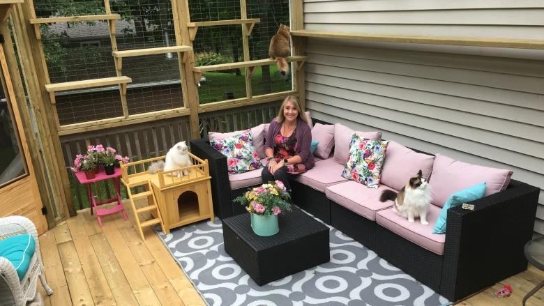Catio living: Why a P.E.I. woman built a patio for her cats