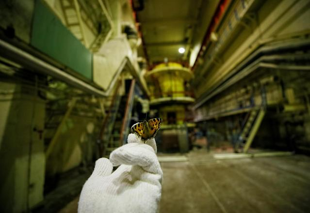 <p>A visitor holds a butterfly that was found in a pump room of the stopped third reactor at the Chernobyl nuclear power plant in Chernobyl, Ukraine, April 20, 2018. (Photo: Gleb Garanich/Reuters) </p>