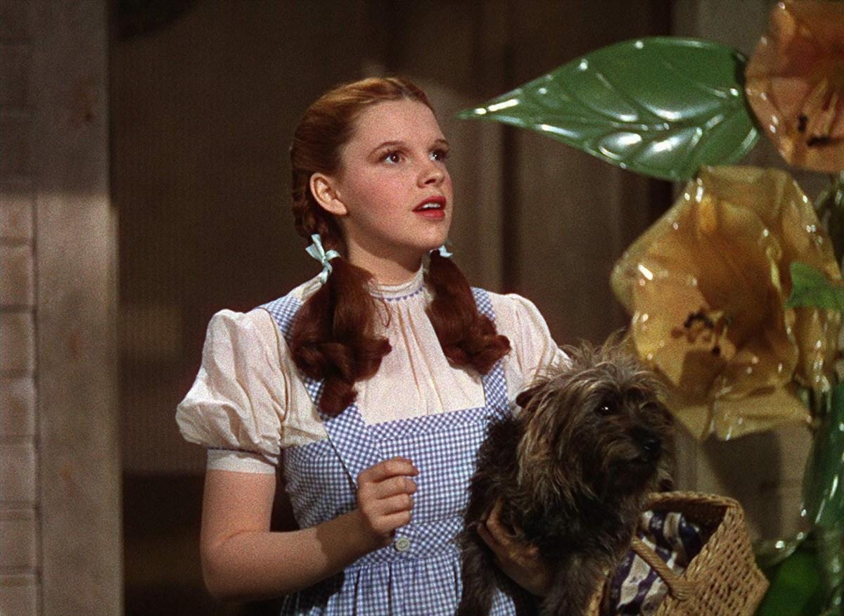"""""""It has dwarfs, music, Technicolor, freak characters, and <strong>Judy Garland</strong>. It can't be expected to have a sense of humor as well, and as for the light touch of fantasy, it weighs like a pound of fruitcake soaking wet.""""  —<strong>Otis Ferguson</strong>, <a href=""""https://newrepublic.com/article/95059/the-wizard-oz-the-adventures-sherlock-holmes-reviewed"""" target=""""_blank""""><i>The New Republic</i></a>"""