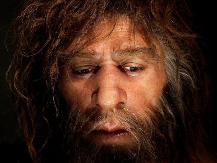FILE PHOTO: Hyperrealistic face of a Neanderthal male is displayed in a cave in the Neanderthal Museum in the northern Croatian town of Krapina February 25, 2010. REUTERS/Nikola Solic/File Photo
