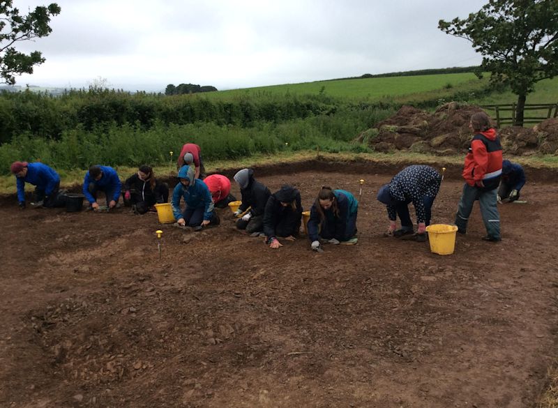 The dig at Ipplepen (University of Exeter)