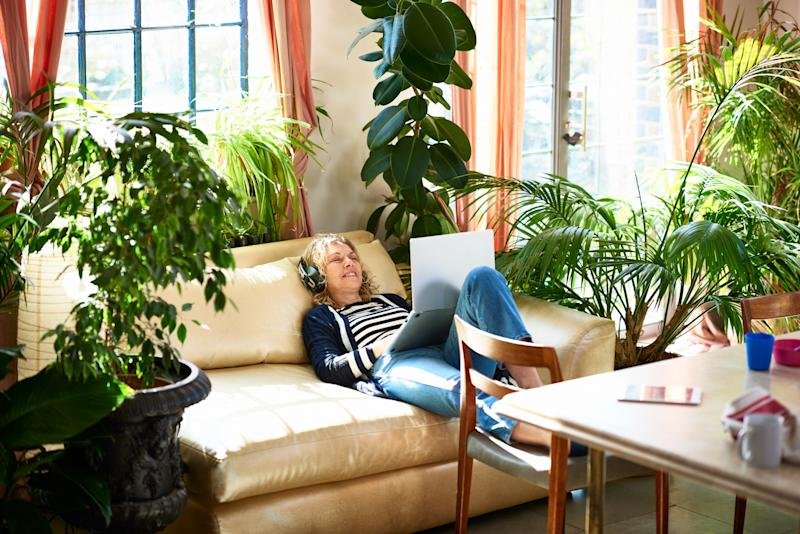 Beautify your stuffy room with these air-purifying houseplants. (Photo credit: Getty)