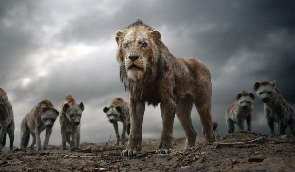 Chiwetel Ejiofor voices Scar in 'The Lion King' (Photo: Walt Disney Studios Motion Pictures / courtesy Everett Collection)