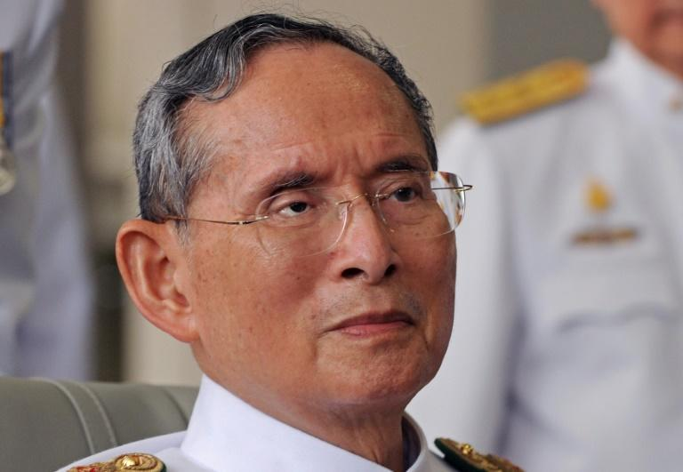 Thailand's King Bhumibol Adulyadej, pictured in May 2010