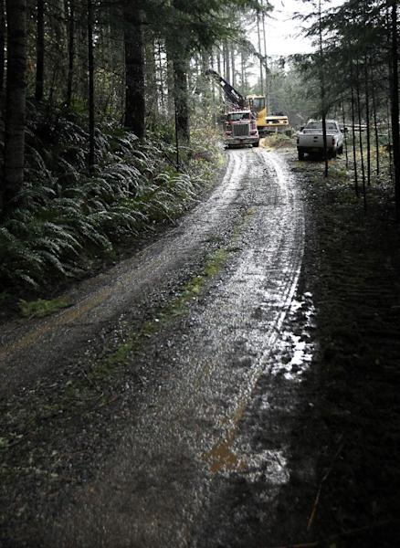 Logs are loaded onto a truck in the forest near Banks, Ore., Friday, Nov. 30, 2012. The U.S. Supreme Court will hear a case Monday, Dec. 3, regarding regulation of water runoff from logging roads.(AP Photo/Don Ryan)