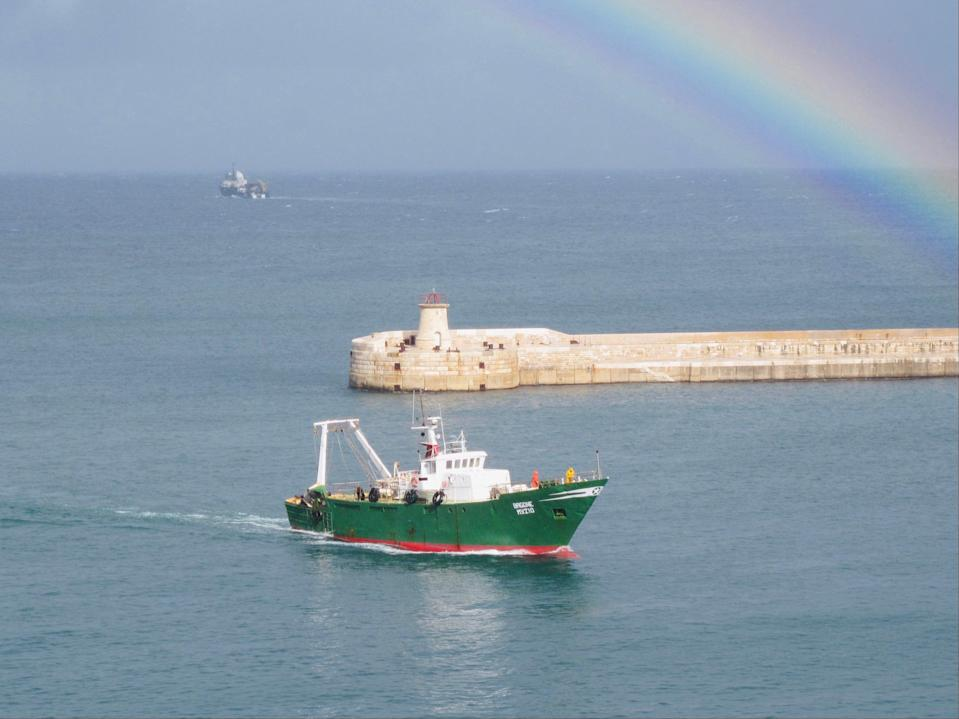 Colour vision: the view from Valletta, currently on the 'amber list' (Simon Calder)