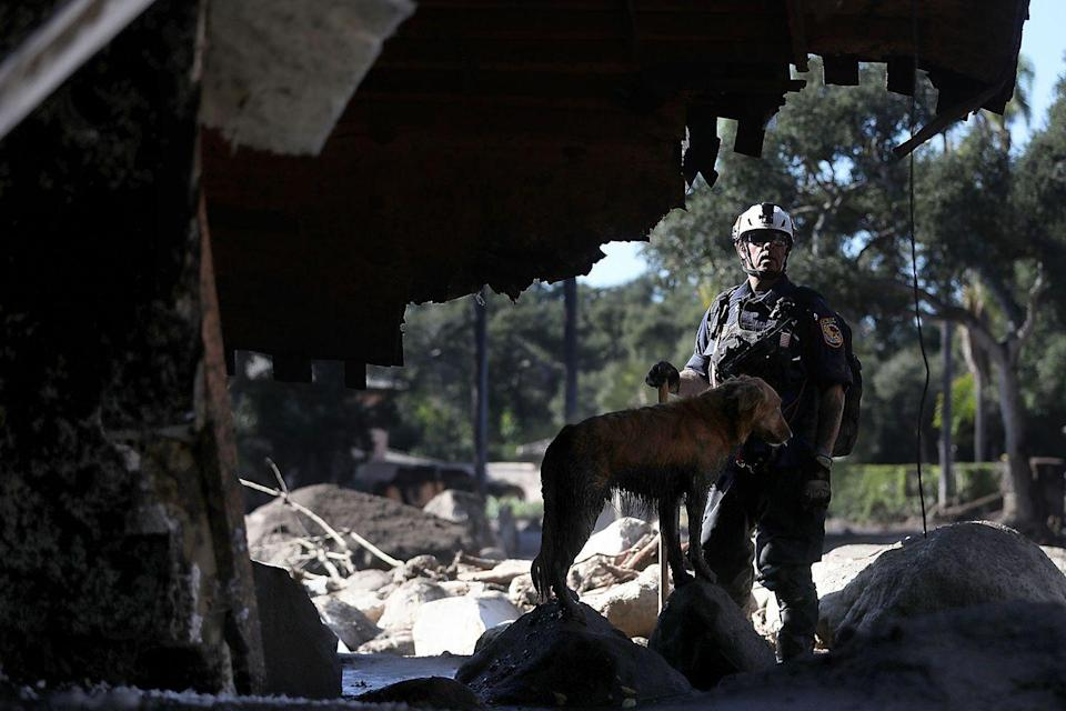 <p>A rescue team member gets some canine assistance during the rescue efforts following the mudslides that devastated Southern California.</p>