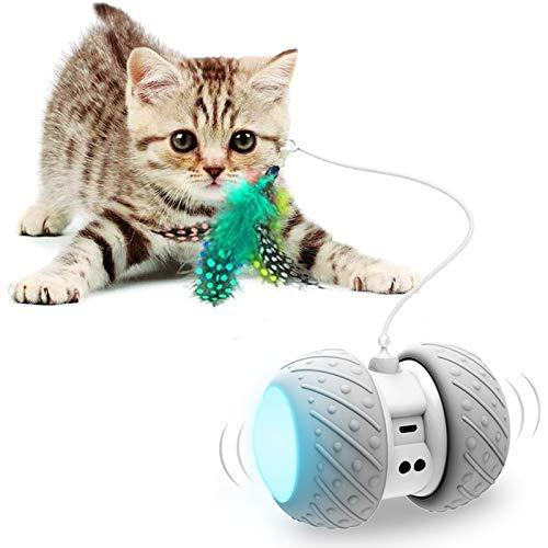 Interactive Robotic Cat Toys,Automatic Irregular USB Charging 360 Degree Self Rotating Ball,Automatic Feathers/Birds/Mouse Toys for Cats/Kitten,Build-in Spinning Led Light,Large Capacity Battery (Amazon / Amazon)