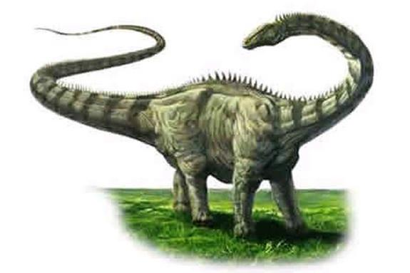 Ouch! Long-Necked Dinosaurs Had Stiff Necks