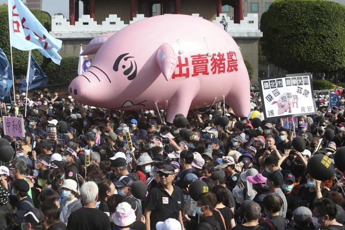 """People hold a pig model with a slogan """"Betraying pig farmers"""" during a protest in Taipei, Taiwan, Sunday, Nov. 22. 2020. Thousands of people marched in streets on Sunday demanding the reversal of a decision to allow U.S. pork imports into Taiwan, alleging food safety issues. (AP Photo/Chiang Ying-ying)"""