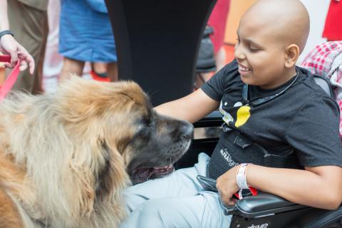PetSmart Charities Grant Expands Pet Therapy Program at