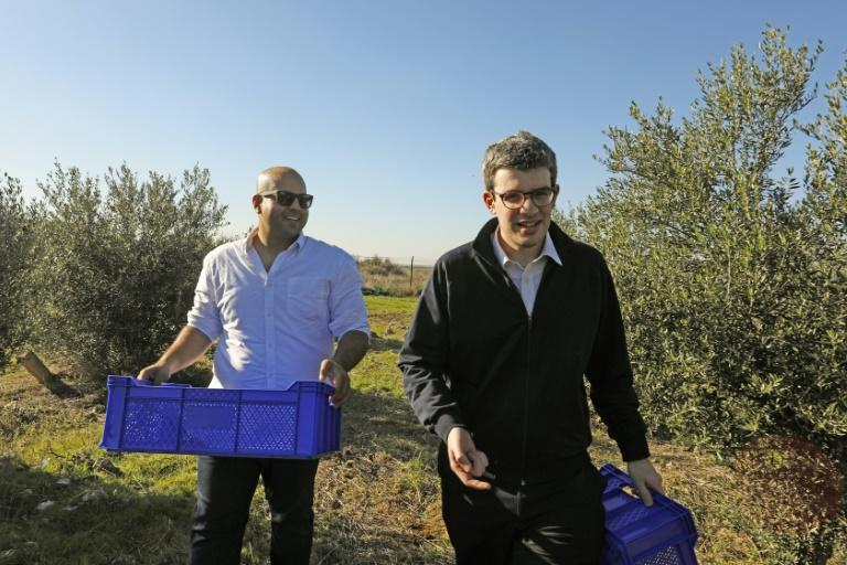 Turkish-Cypriot Hasan Siber (L) and Greek-Cypriot Alexandros Philippides walk in an olive grove in Mora (Meriç), a village in the self-proclaimed Turkish Republic of North Cyprus near the divided capital Nicosia