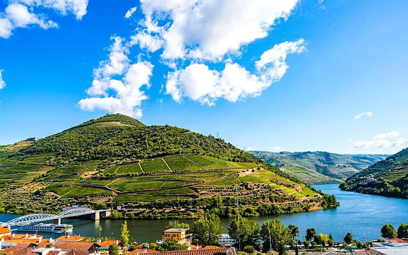 Find a region shaped by viticulture on a Douro cruise - ISTOCK