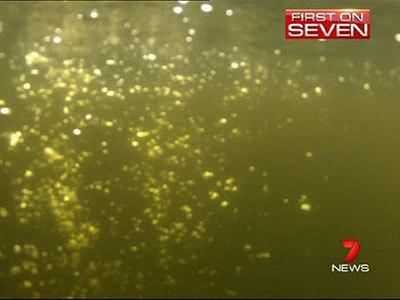Why a major Sydney river is bubbling