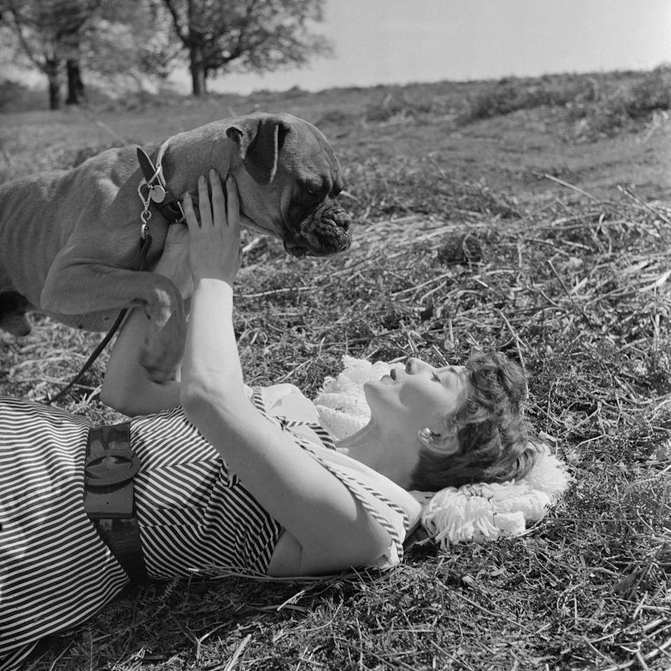 <p>Before <em>Breakfast at Tiffany's </em>(1961), Hepburn played with pups at the park. The British actress rose to fame with her early turns in <em>Roman Holiday</em> (1953) and <em>Sabrina</em> (1954).</p>