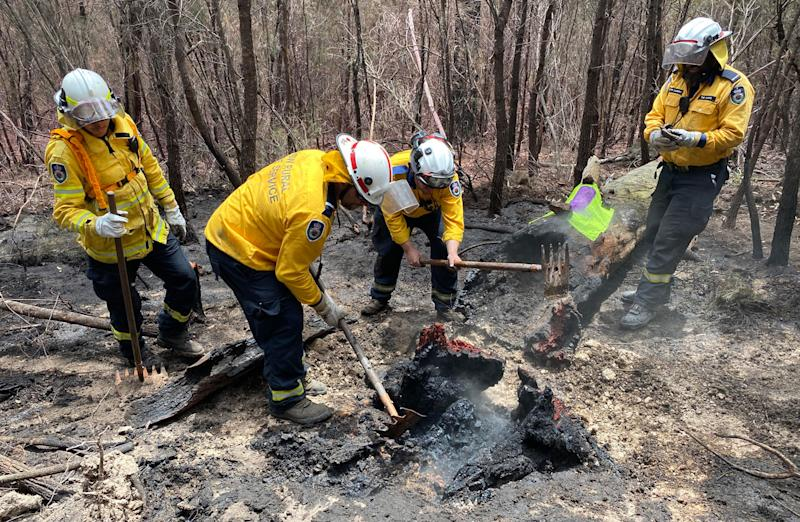 NSW firefighters work in a charred forest.