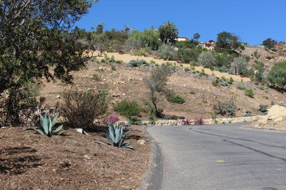 Cleared land along Montecito's high road system.