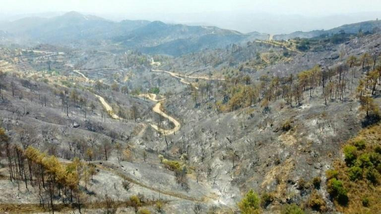 Cyprus suffers worst forest fire in decades