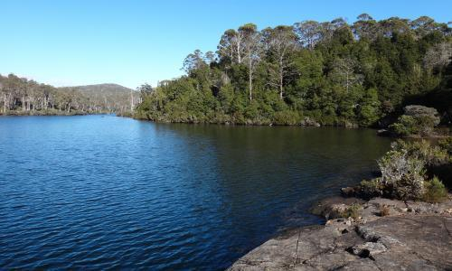 Ban on contentious tourism project in Tasmanian world heritage area overturned