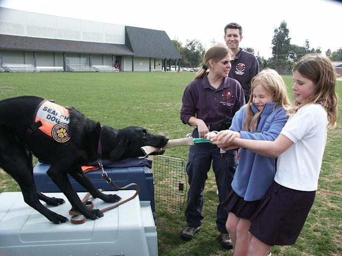 Search dog Abby engages in a tug-of-war