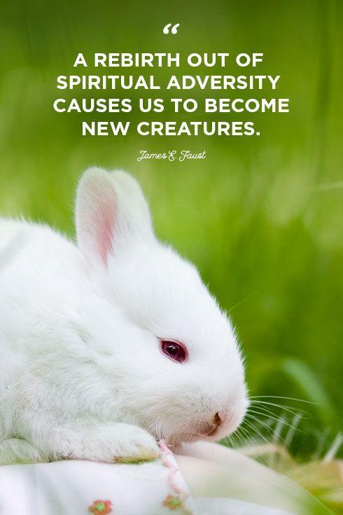"""<p>""""A rebirth out of spiritual adversity causes us to become new creatures.""""</p>"""